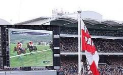 cheltenham-horse-racing