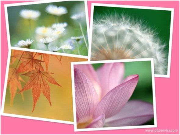 photovisi-online-photo-collage-result-screenshot
